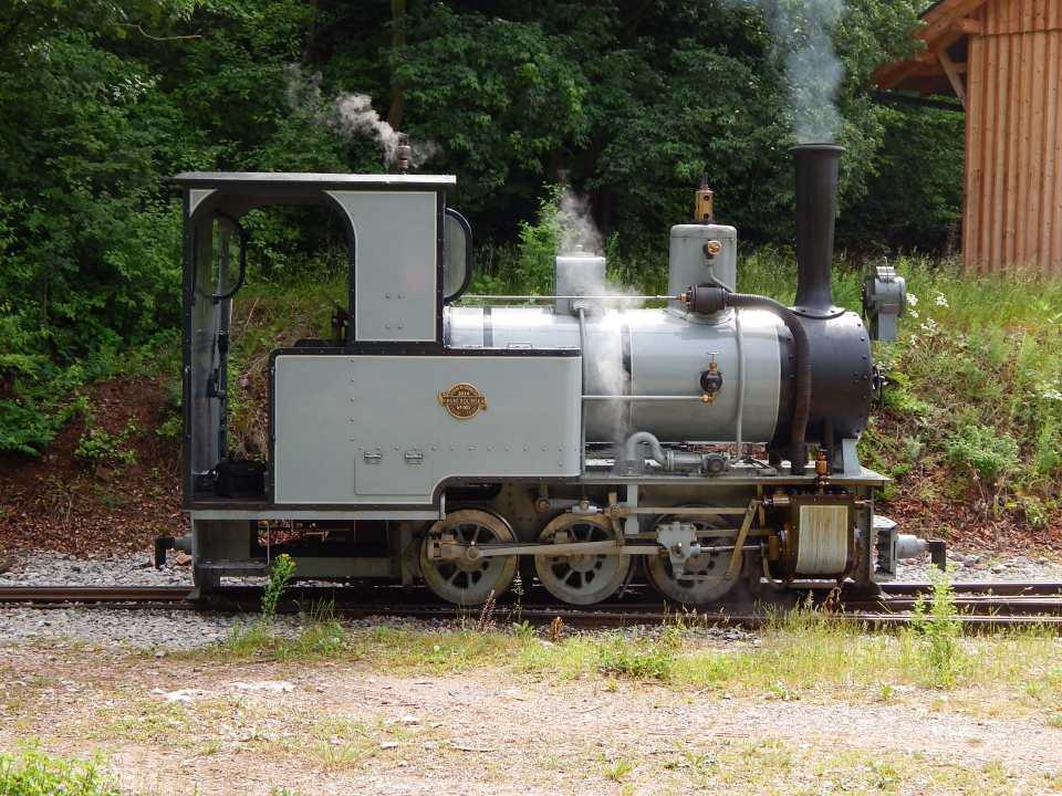 DSCN3665